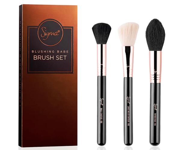 sigma beauty blushing babe brush set